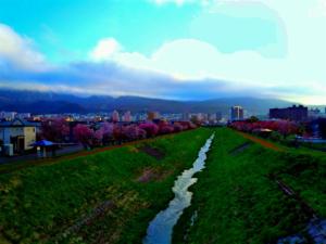札幌市手稲区の画像