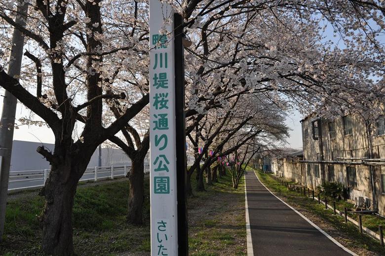 さいたま市桜区の画像