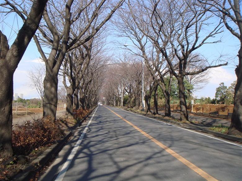 横浜市瀬谷区の画像