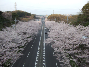 横浜市緑区の画像