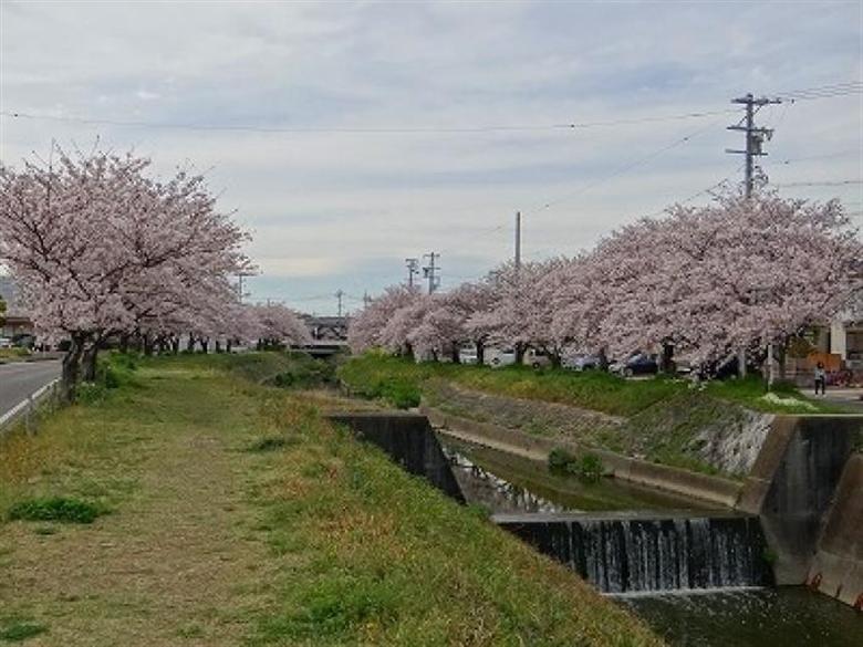武豊町の画像